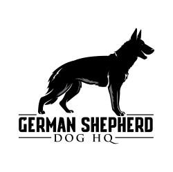 German Shepherd Dog HQ
